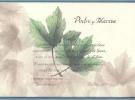 Invitación de tarjeta envuelta en vegetal junto con sobre crema a juego